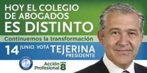 Abogados: Tejerina electo para un nuevo mandato de gestión