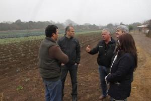 Baldassi demandó apoyo para productores frutihortícolas