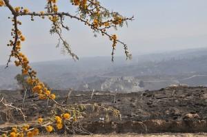 El gobierno provincial anunció plan de reconstrucción por incendios