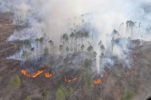 Hay 450 evacuados por los incendios, en buen estado de salud