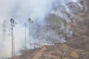 Informe de situación de los incendios en Córdoba