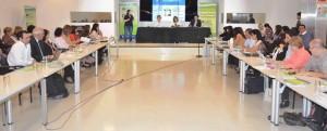 Gobierno y ONG analizan políticas públicas en materia de discapacidad