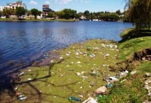 Solicitan conformar empresa para la limpieza de lagos