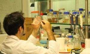 Inauguran Polo Científico Tecnológico para América Latina