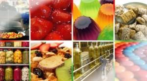 Congreso Internacional de Alimentos en la provincia mediterránea
