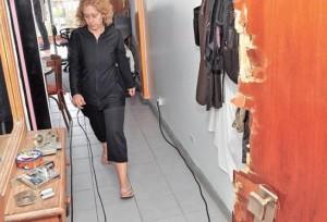 Parlamentario radical pide endurecer las penas contra delitos a la propiedad