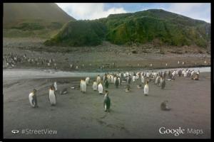 Street View llegó a las Islas Malvinas
