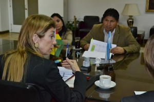 Giorgi recibió al ministro de salud boliviano Juan Carlos Calvim