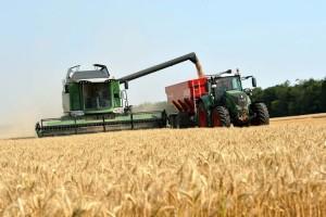 Encuesta de AACREA muestra que mejoran las expectativas económicas de los productores