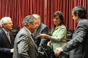 """Senado: Para la titular del bloque PRO, el gobierno y la oposición están """"aprendiendo a consensuar"""""""