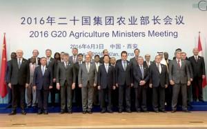 """Afirman que Argentina mostro su """"potencial productivo"""" en la reunión del G20 Agrícola"""
