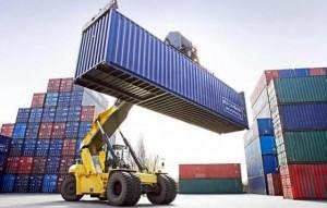 Las exportaciones de productos agrícolas aumentaron en el primer semestre