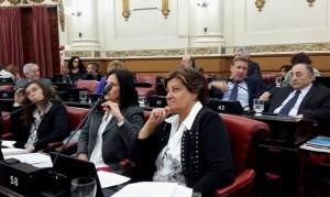 Patrimonio de la Fundación San Roque, bajo la lupa de parlamentarios radicales