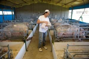 Lanzan una nueva línea de crédito para emprendedores agroindustriales