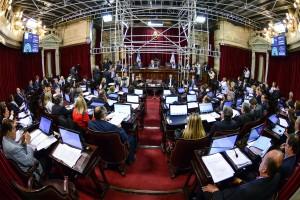 """Es ley el proyecto que fija las normas en los contratos de """"Participación Público-Privada"""""""
