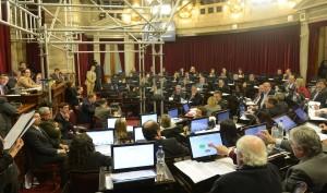 """El Senado aprobará el Presupuesto 2017 y la disminución de """"superpoderes"""""""