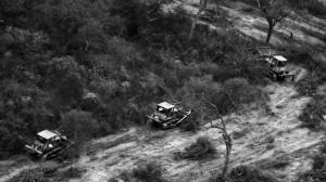 """Ley de Bosques: Al sostener el principio de """"no regresividad"""", experto demandó conservar las hectáreas en rojo"""