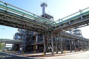 Aumentó la producción de aceites de soja y girasol