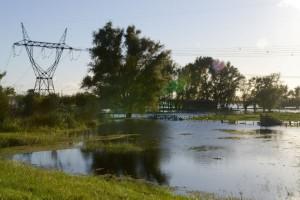 Se declaró la emergencia agropecuaria en las provincias afectadas por lluvias, incendios y heladas