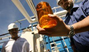 La producción de biodiésel creció 46,9% en 2016