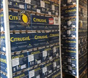 Luego de 8 años,  se exportó el primer cargamento de limones a Brasil