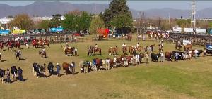 Espera un gran éxito de convocatoria y negocios en la Exposición Rural de Salta