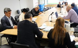 Oficialismo avanzó en comisión con la  Consulta Popular de Mestre y ADN impulsa proyecto alternativo