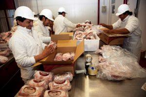 Aumento de reintegros a las exportaciones de la cadena porcina
