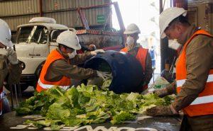 Diseñaron plan para reducir residuos en el Mercado Central