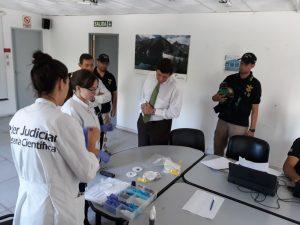 Devastan droga secuestrada por un valor estimado de $28 millones