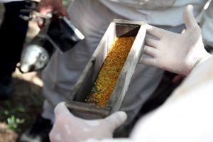 Agroindustria ofrece capacitación a distancia para PyMEs alimentarias