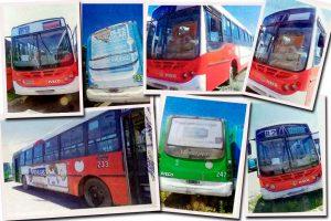 Subasta electrónica de 29 colectivos desafectados del servicio de transporte público