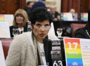 Polémica por la legisladora oficialista que cobra 98 mil pesos y tiene tarifa social