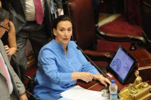 Michetti contrarrestó las acusaciones de Pichetto por el proyecto de aborto legal