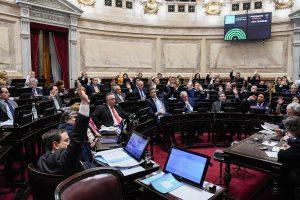 """Lo aprobado por el Senado es """"para que CFK mantengan lo robado"""", cuestionó Ocaña"""