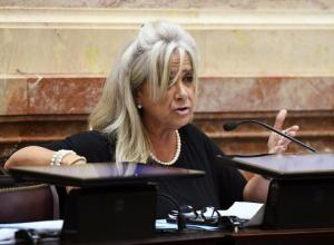 Senadora K acusó a la Justicia de perseguir al peronismo