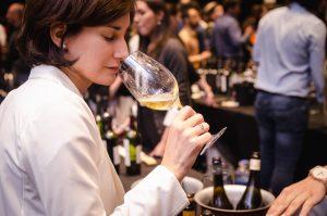 Catas dirigidas, el espacio ideal para  disfrutar de los mejores vinos