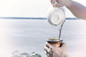 Yerba mate: Exportaciones récord y consumo interno se mantiene sólido