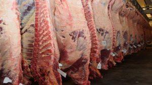 Se concretó la primera tanda de exportación de carne vacuna a EEUU