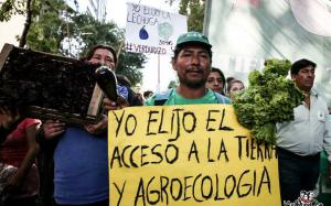 Otro «verdurazo» de productores bonaerenses en Plaza de Mayo