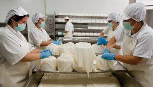 Incorporan establecimientos lácteos de elaboración artesanal al Código Alimentario