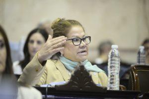 «Tiene derecho a donar su sueldo», le contestó el macrista Lipovetzky a Camaño