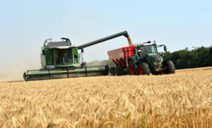 La cosecha total se encamina a marcar un récord histórico
