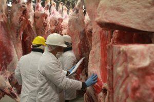 La Argentina amplía las exportaciones de carne bovina a China