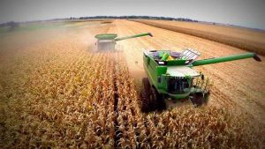 La cosecha 2018-2019 consolida su récord