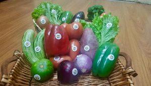 Agroindustria otorgó el primer Sello «Producido por la Agricultura Familiar»