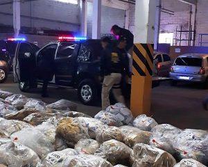 Devastan estupefacientes secuestrados por el Fuero de Lucha contra el Narcotráfico