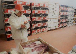 Las exportaciones de alimentos crecieron un 32% en volumen durante julio