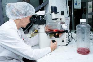 Se implementa el nuevo marco regulatorio en biotecnología