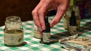 Analizan posibles cambios en la ley sobre autocultivo de cannabis para uso medicinal